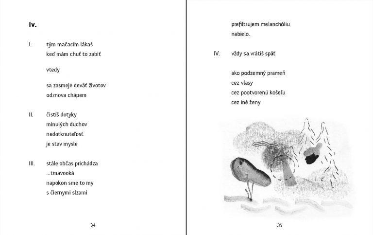 Ilustrácie k básnickej zbierke Tanečnica na špičke