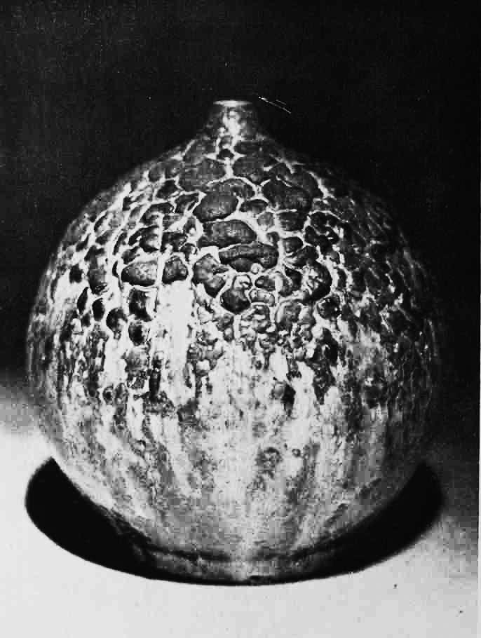 Imrich Vanek Modelová váza, Šamotová hlina, 1961